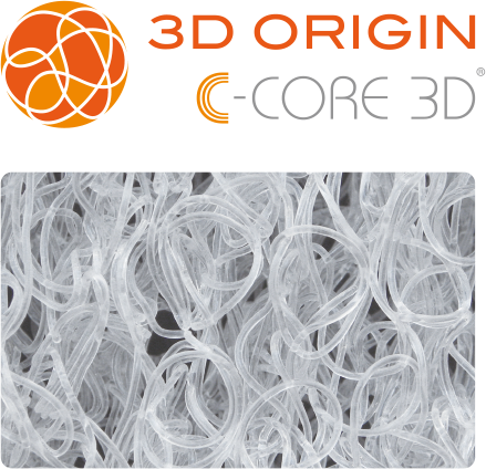 C-CORE 3D
